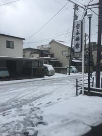 今年の福井の雪は?どう? - ふくい女将日記~宝永(ほうえい)旅館、おかみでございます。