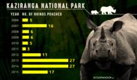過去10年間のインドでのインドサイ密猟の合計総数 - 親愛なる犀たちへ