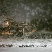 マイナス8℃ * 雪降る夜 - ぴきょログ~軽井沢でぐーたら生活~