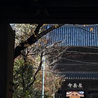 討ち入り本懐の翌日なれど泉岳寺参拝18.12.15 13:43 - スナップ寅さんの「日々是口実」