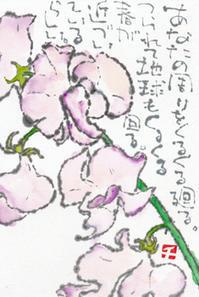 スイートピー・春が近づいているらしい - 北川ふぅふぅの「赤鬼と青鬼のダンゴ」~絵てがみのある暮らし~