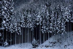 京北雪景色 - まっちゃんのPHOTOブログ