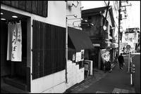 中野-32 - Camellia-shige Gallery 2