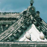 カメラを新調試し打ち 小田原城に登城でござる18.12.30 12:59 - スナップ寅さんの「日々是口実」