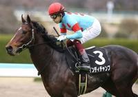今週の重賞 - ホースバーエルコン HORSE BAR ELCON