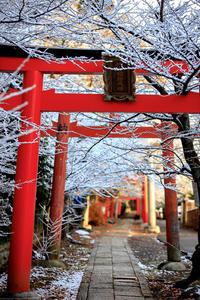 雪景色!~竹中稲荷~ - Prado Photography!