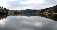 真冬の雄蛇ヶ池(おじゃがいけ) - 東金、折々の風景