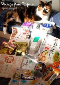 信州から届いた嬉しい小包と、モデル失格の隊長 - Kyoko's Backyard ~アメリカで田舎暮らし~