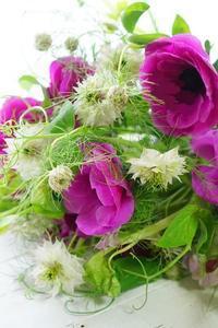 くるくる、クネクネ、もじゃもじゃと今年のバレンタイン - お花に囲まれて