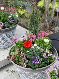 まるで陶器のよう!軽くておしゃれな植木鉢 - ルーシュの花仕事