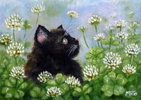 黒猫inシロツメクサ畑 - 油絵画家、永月水人のArt Life