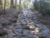 神奈川一周の旅[第13日]#6feat. 東海道中膝車輌 - 神奈川徒歩々旅