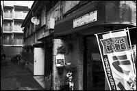 中野-33 - Camellia-shige Gallery 2