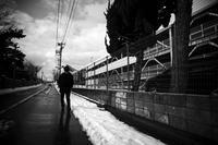 kaléidoscope dans mes yeux2019新潟島#18 - Yoshi-A の写真の楽しみ