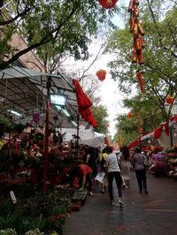 観音堂前の出店に寄って - 日日是好日 in Hong Kong