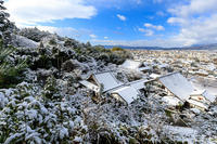 雪の京都白銀の圓光寺 - 花景色-K.W.C. PhotoBlog