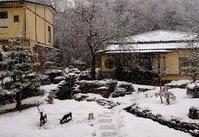 先日の寒波 - 金沢犀川温泉 川端の湯宿「滝亭」BLOG