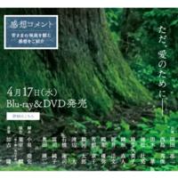 春の椿 - 365歩のマーチ