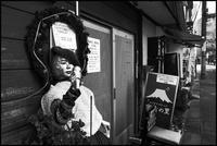 中野-34 - Camellia-shige Gallery 2
