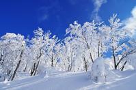 面白山の樹氷-6 - 自然と仲良くなれたらいいな2
