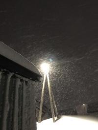 雪が降る☆ - 笑う門には福来たる
