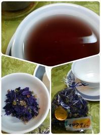 マロウ茶・美味しいよ! - 気まぐれ雑草日記