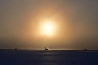 気嵐の夜明け2019.1.30その2コブハクチョウ編 - やぁやぁ。