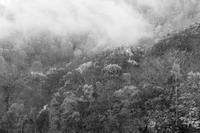 モノクロ風景妙高乙見湖4 - 光 塗人 の デジタル フォト グラフィック アート (DIGITAL PHOTOGRAPHIC ARTWORKS)