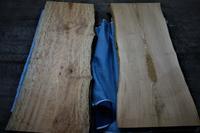 椨と栗日本の樹 - SOLiD「無垢材セレクトカタログ」/ 材木店・製材所 新発田屋(シバタヤ)
