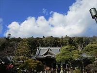 静岡県伊豆市修善寺にて天城越えを歌う会、結成☆ - 占い師 鈴木あろはのブログ