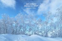 仁頃山【 2019-2~51月まとめ 】 - あ~した天気になぁ~れ♪