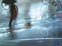 一月の雨【#330】 - 一写一想