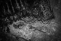 Rainy Days And Mondays - SILENT SOLILOQUY
