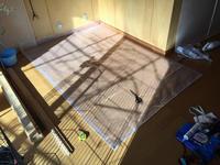 ワンズのケージの床を再構築:その2 - カワセミ王国