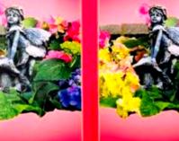 ♥気になる彼の1週間♥2/1~2/7☆(占い) - rose rose♥Blog