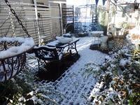 """Espero que sea solo """"el primer día de nieve"""". - Gardener*s Diary"""