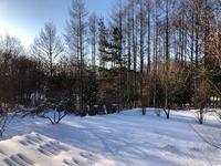 雪景色 - 風路のこぶちさわ日記