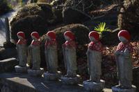 日だまり散歩甘楽町長厳寺 - 風の彩り-2