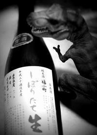 「福小町」純米無濾過生酒しぼりたて-REX - 花鳥風月あめあられ