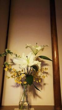 おたまじゃくし - サリーハウス☆東日本大震災福幸日記