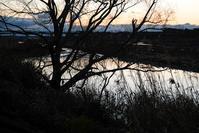 朝の冬色 - 長い木の橋