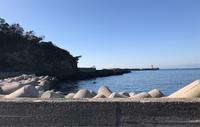 三浦半島、春の匂い - おしゃれを巡る冒険