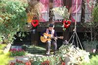 2/10(日)は「バレンタインコンサート」を開催します - 神戸布引ハーブ園 ハーブガイド ハーブ花ごよみ