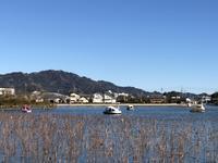 A Beautiful Day in Japan (晴天の一日) - ファルマウスミー