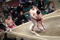 大相撲初場所(5日目)~白鵬が負傷か - 何でも写真館