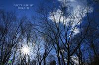 山道散歩♪・後編 - FUNKY'S BLUE SKY