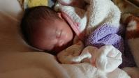 生まれた孫に会いに行きました - 五十路を過ぎてブログに挑戦