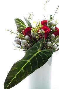 花遊び・色あそびレッスン - お花に囲まれて