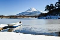 精進湖 - 富士山に夢中