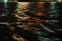 海辺の夜2019.01.31 - ちわりくんのありふれた毎日II